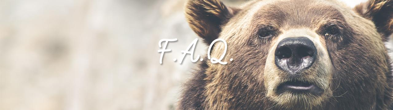FAQbig2